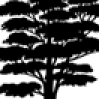 Happy Massage London Beach logo